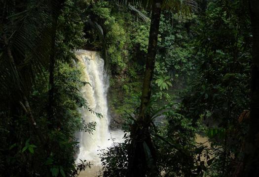 Maliau Basin - Ginseng Falls