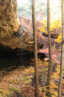 Hideout Hollow Trail + Waterfall (Buffalo River) - 2 mi (o&b) photo
