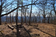 Ouachita Trail 02: Pashubbe TH to Kiamichi River TH (Wilton Mtn.) (34.3 - 39.2) photo