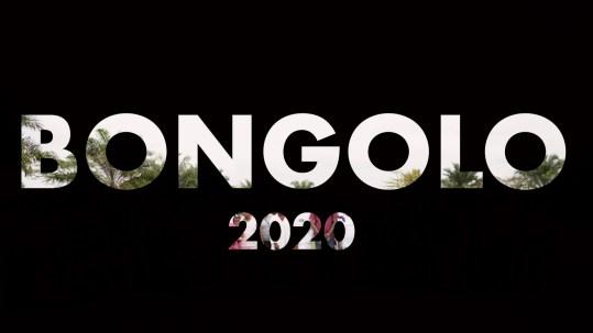 Bongolo 2020 - 40 Foot Ocean Container Load - Ark Transportation