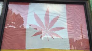 Lección canadiense, su consulta sobre cannabis