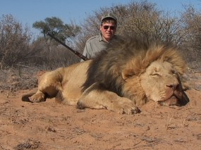 Killed Lion