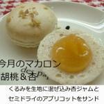 3月のマカロン「胡桃&杏」