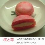 今月のマカロンは桜と苺