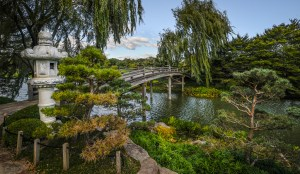 Dave Waycie - Bridge to Japan