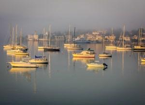 Steve Nichols - Sailing at Dawn