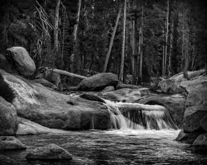 Patrick Grady - Dana Fork and Tuolumne River
