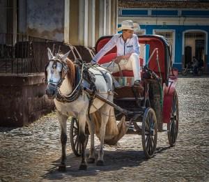 "Nancy Hassman - ""Trinidad Taxi"""