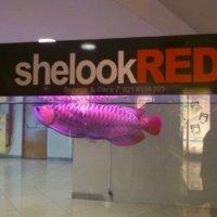 Super Red Arowana,shelookRED