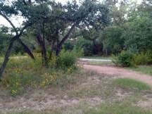 Armadillo Park
