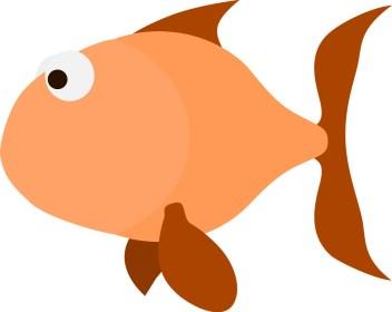 Scared Goldfish