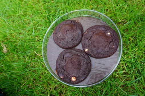 Las galletas de Van Stapele