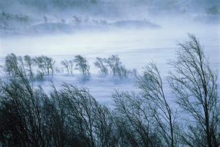 Through the Cracks: Winterize
