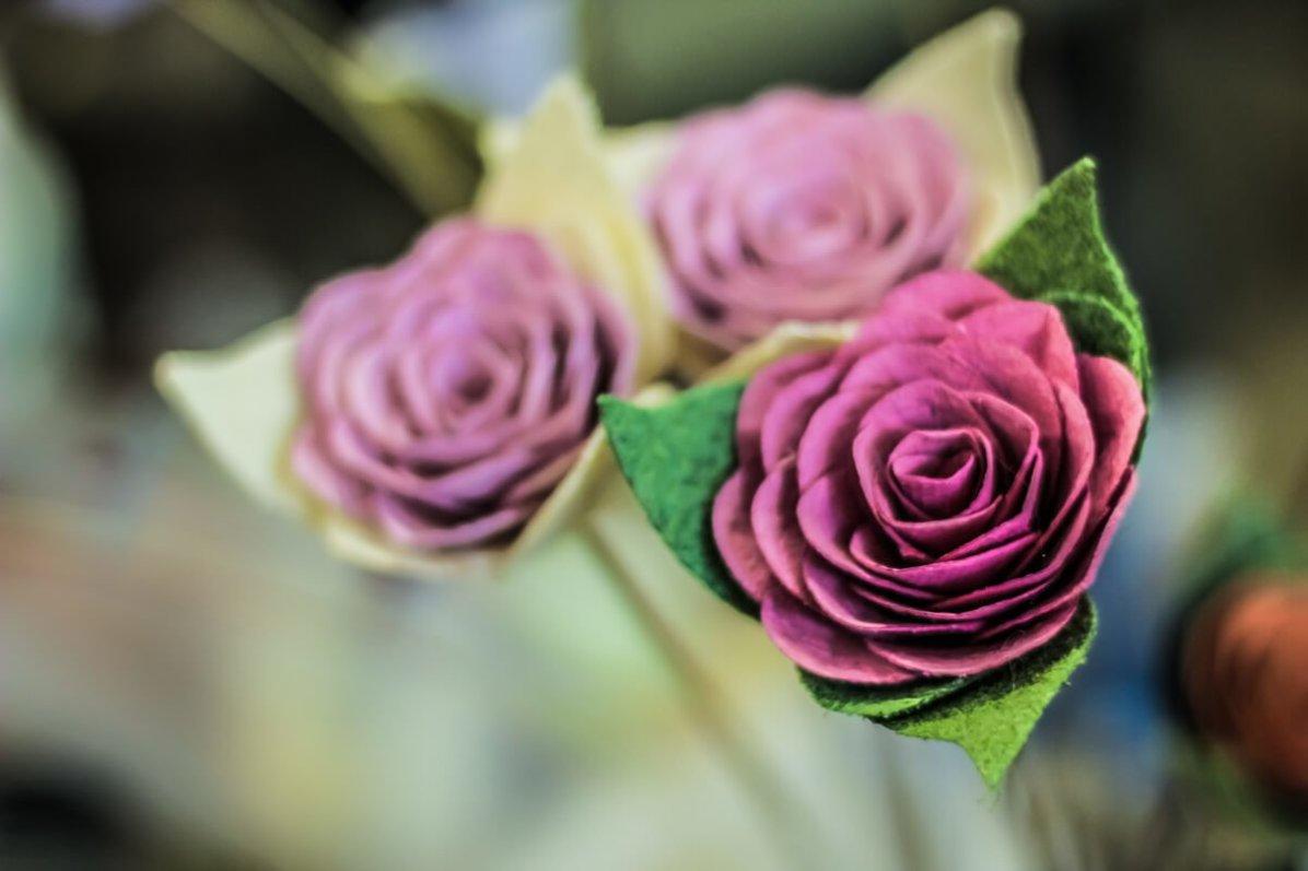 Temporada das Flores 07