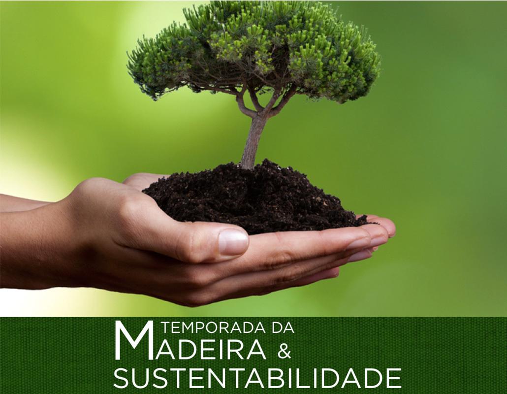 temporada da madeira e sustentabilidade