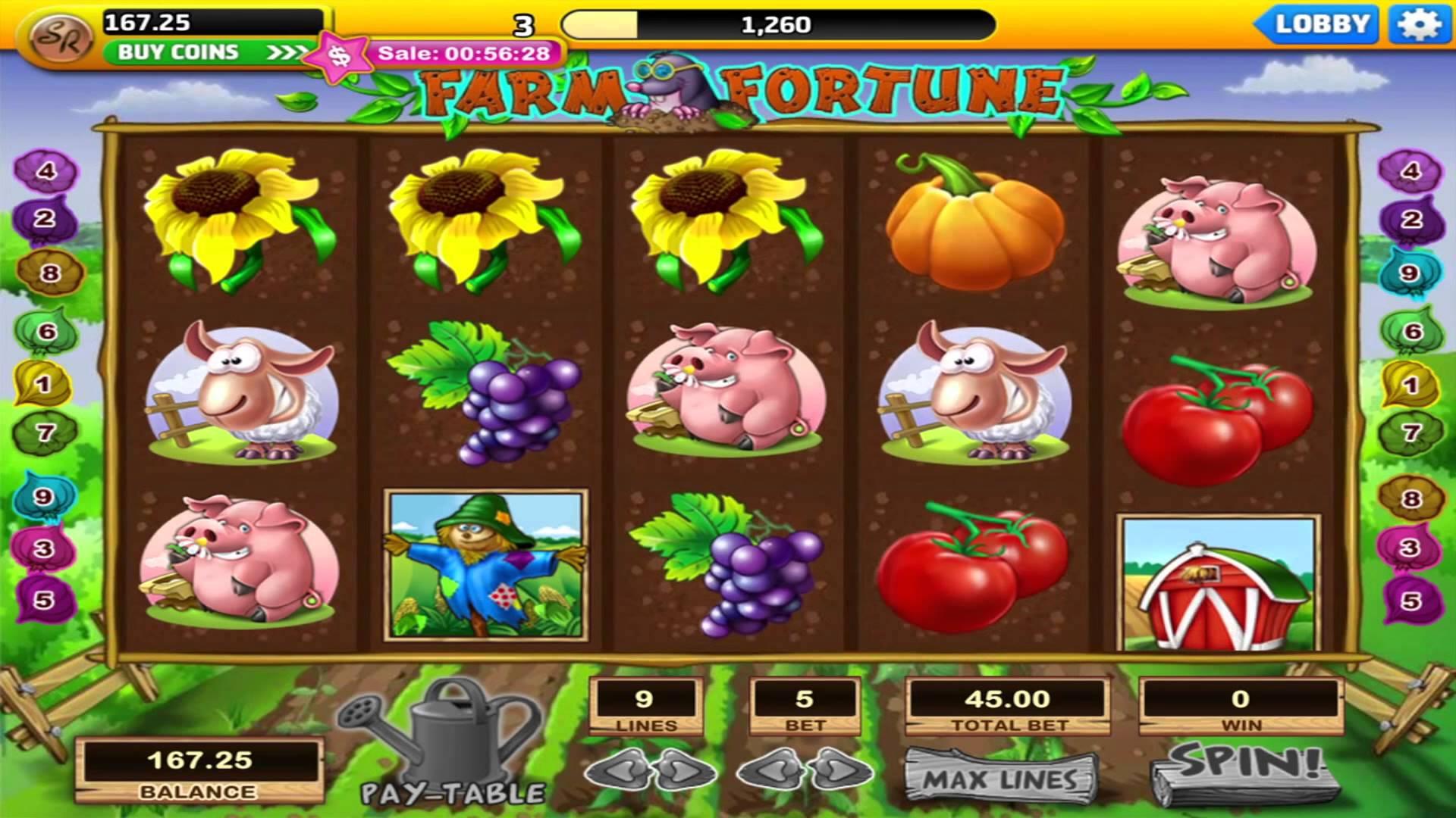 Farm Fortune