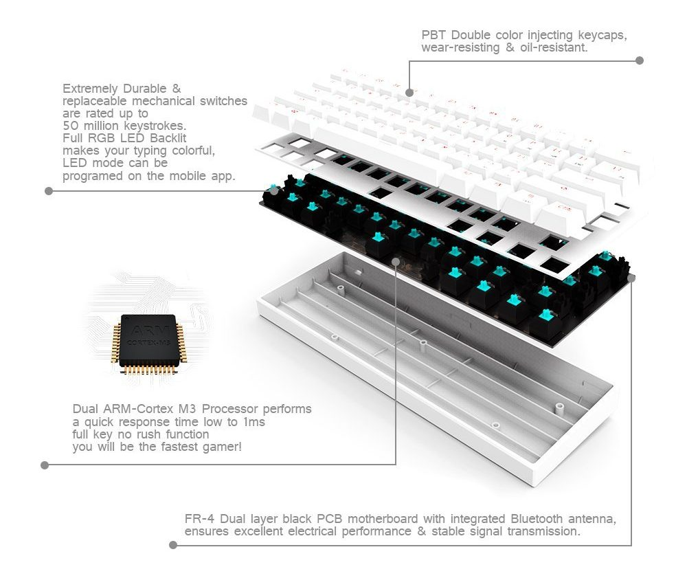A detailed look at the keyboard via SainSonic.