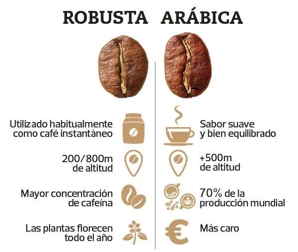 cafe-robusta-y-arabica