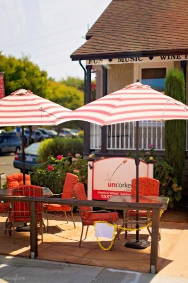 Wine Country, Sonama, Napa Valley San Francisco Carlifornia by Photographer Armenyl.com-12
