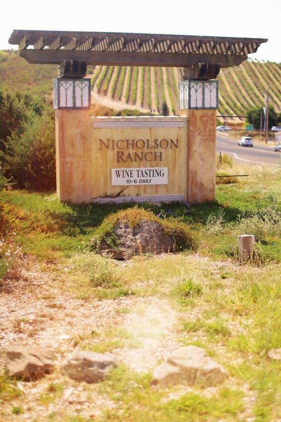 Wine Country, Sonama, Napa Valley San Francisco Carlifornia by Photographer Armenyl.com-7