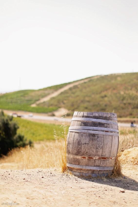 Wine Country, Sonama, Napa Valley San Francisco Carlifornia by Photographer Armenyl.com-8