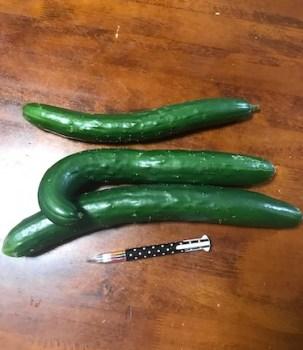 自家栽培野菜料理