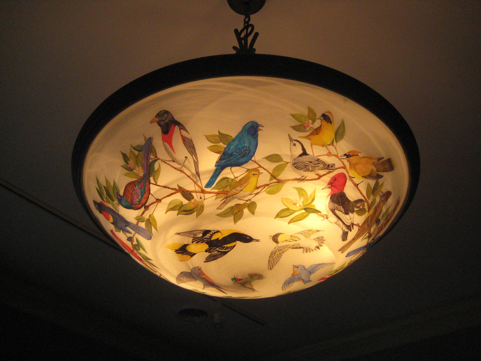 bird light2.jpg