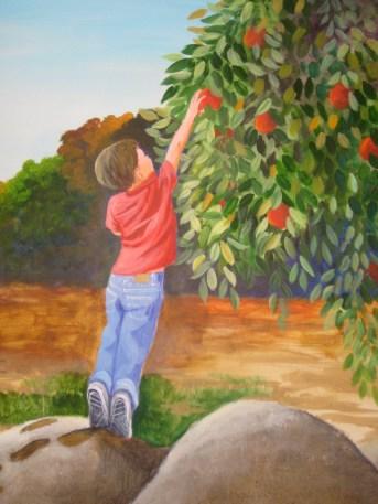 orchard hills6