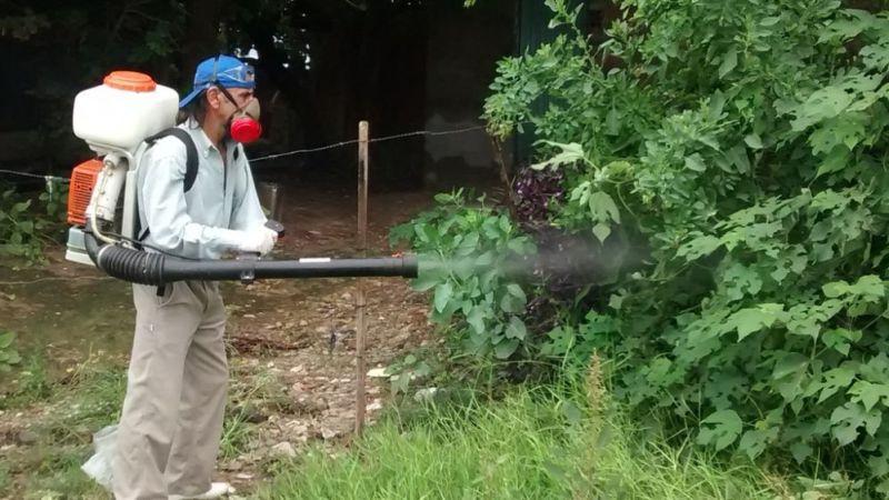 FumigacionDengueParana