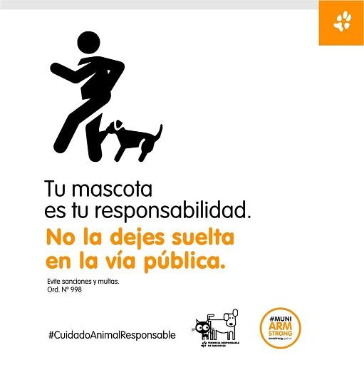 Armstrong. Campaña de concientización sobre perros en la vía pública.