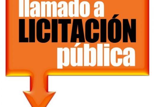 Llamado a Licitación Pública N° 15/2021.