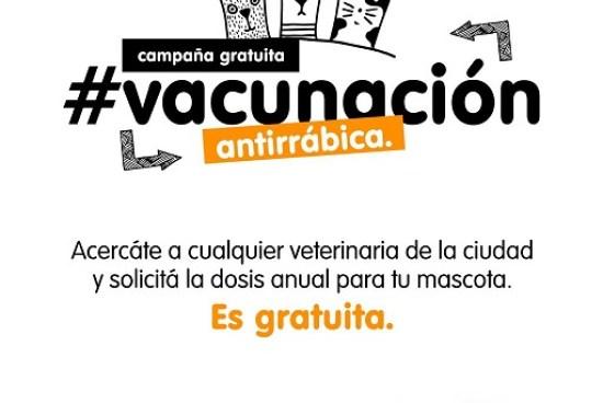 Armstrong. Vacunación antirrábica en veterinarias.