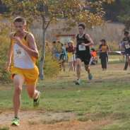 Johnson Excels at CIF State Cross Country Finals