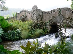 Lovely old bridge being gobbled up by the wild, Dunster, Somerset, UK