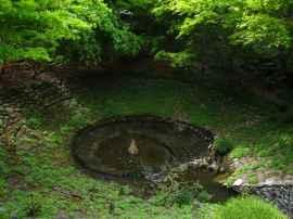 Jardin Albert Kahn (23)