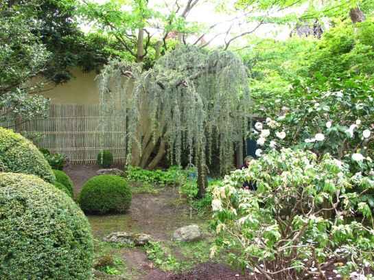 Jardin Albert Kahn (29)