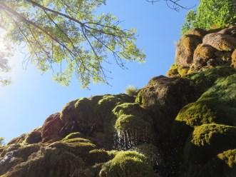 Jardin des fontaines pétrifiantes (38)