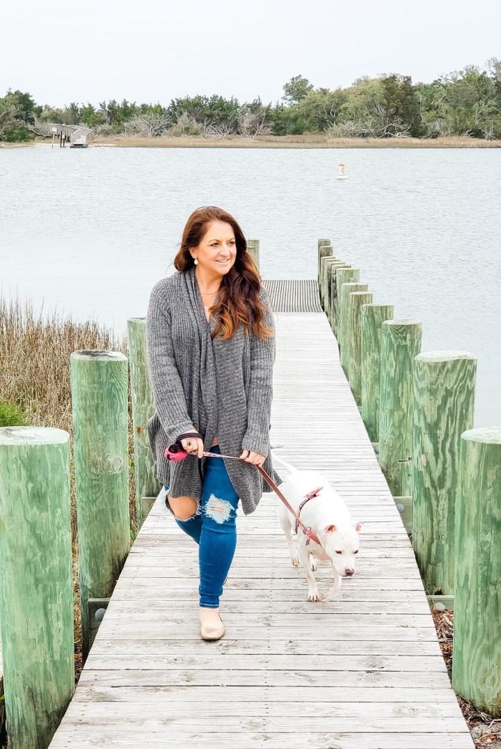 Seeking Guidance as a Pet Parent from a Psychic Advisor