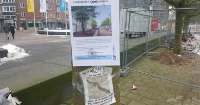 https://arnhemshart.nl