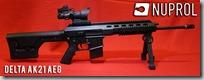 DMR AK21 1
