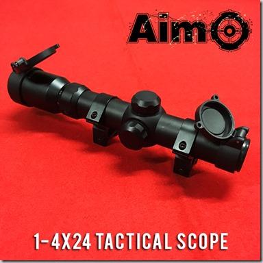 AIMO Image 1