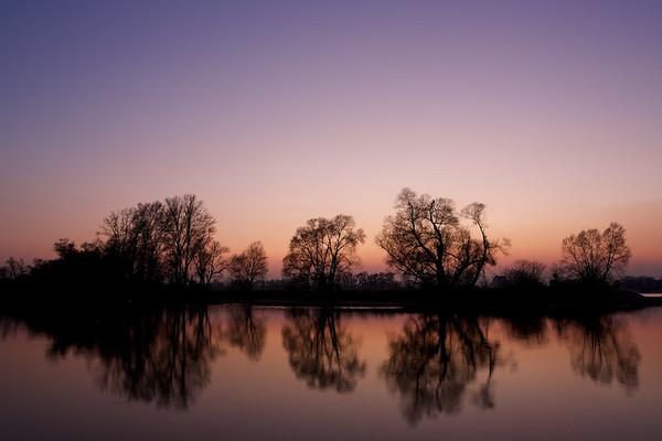 Nach Sonnenuntergang am Altrhein