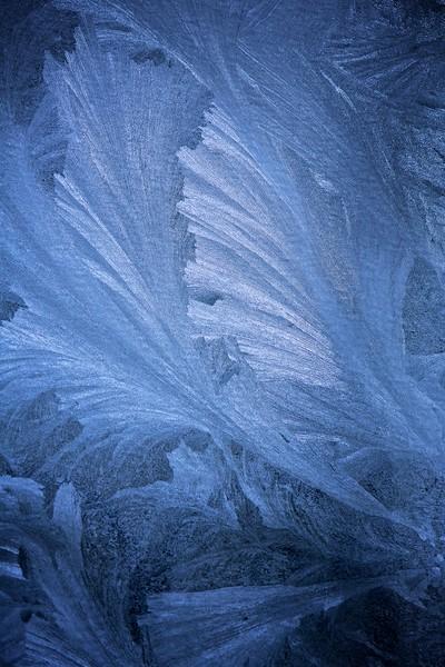 Eisblumen - Hohe Tauern Nationalpark Osttirol, Österreich