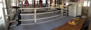 Arnold Boxfit 4133 - Sparring-Bereich