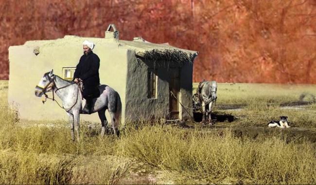 Step w Kazachstanie