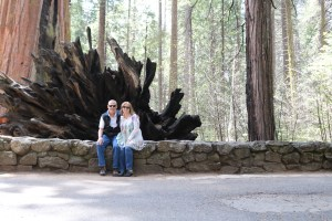 photo of Tim and lisa at Big Trees State Park