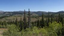 Salt River Pass