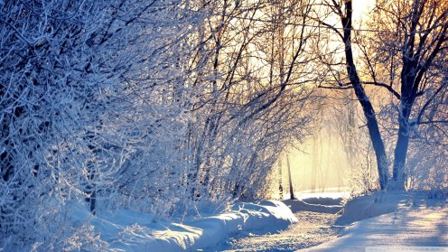 winter_sun_by_steelscreen-d64k7lu