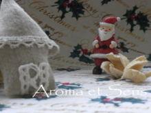 浦和発♪アロマでオンリーワンの幸せへと導く自宅サロン-サンタクロース