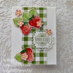 By Su Mohr for TGIF; Click aromasandart.com to go to my blog for details! Featuring: Berry B;essings Bundle, Berry Delightful Designer Paper, So Sentimental Stamp Set, Buffalo Check Stamp, Ornate layers Die, Ornate Frames Dies; #strawberries #strawberriesoncards #Berry Delightful #Buffalocheck #sosentimental #sale-a-bration2021 #handmadecards #handcrafted #diy #cardmaking #papercrafting #stamping #stampinup2021 #berries #berriesoncards#sumohr #aromasandart.com